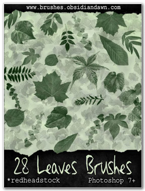 28 Leaves Brushes